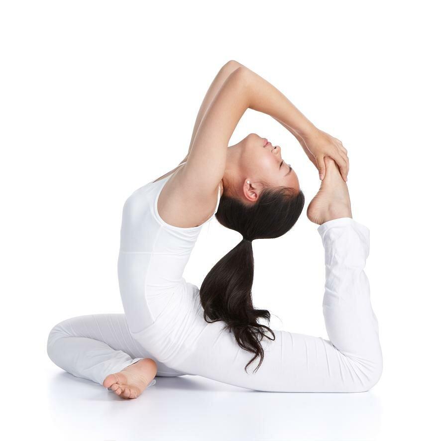 behavioural-flexibility